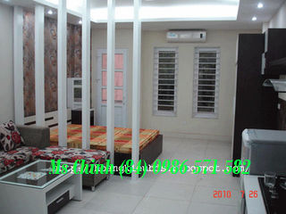 cheap and very nice 1 bedroom apartment for rent in cau