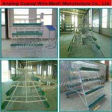 china (mainland) manufacture layer house, chicken house, chicken egg layer house