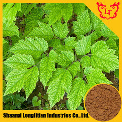 100% Natural Black Cohosh Extract / Triterpene Glycosides 2.5% 5% 8% (HPLC)