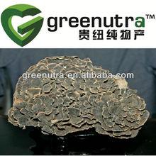 yunzhi mushroom extract