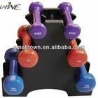 vinyl dipping dumbbell set/gym equipment price