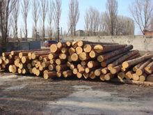 Spruce poles