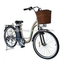 powered e-bike middle motor e bike