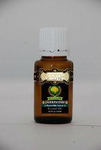 Essential Oils Frankincense resins Boswellia Scara and Powder
