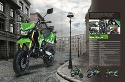125cc EEC road legal pitbike dirt bike for EU