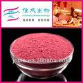 Carne de aditivos alimentarios/polvo de arroz fermentado