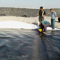 High strength Fish farm pond liner hdpe geomembrane