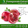 3W Supply High Quality Pomegranate Punicalagin Extract Powder P.E.