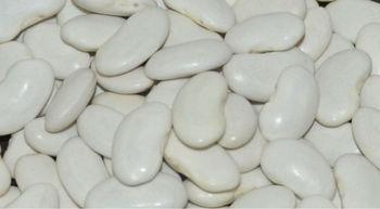 organic white beans