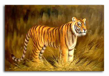 paint wild animals oil painting of tiger