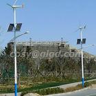 vertical wind turbine street lights intelligent,small scale,off-grid system 100w-300w solar modules 300w wind turbine