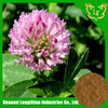 GMP factory supply red clover extract p.e with good quality and competitive especially for your henlth