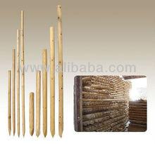 RAW WOODEN STICK Acasia, Styrex, Eucalyptus from Vietnam to build fence