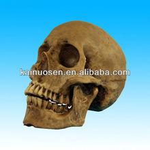 Miniature resin halloween skull