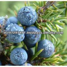 Juniper Berry water