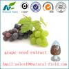 Best price of organic grape seed extract powder