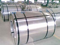 Galvanized steel and Pre-Painted Galvanized steel
