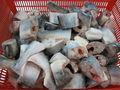 viet nam congelado filete de pangasius de pescados y mariscos