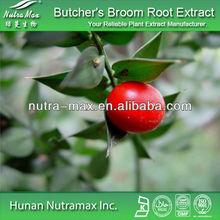 High quality Butcher's Broom Root Extract,2.5% ruscogenine