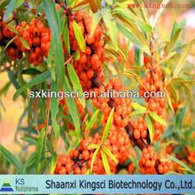 Organic Natural seabuckthorn fruit powder