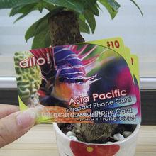 PVC/Paper Net Call Cards