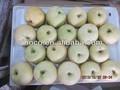 Chinois poire d'or, variétés de poire