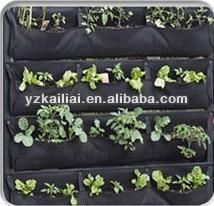 Parete verticale giardinaggio fioriere/crescere borse/crescere fioriere
