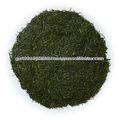 sain et délicieux shirofuji organique de thé vert sencha japonais