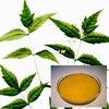 Essential Oil 100% Pure Neem oil in bulk quantity