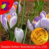 100% Best Quality Pure Saffron Essential Oil For Fair Complexion