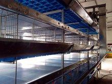 multi-tier broiler cage/ chicken farm