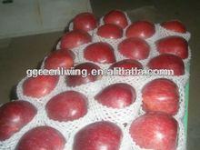 2014 Artificial foam Fruits Big Red Apples