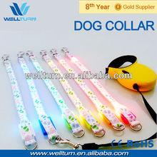 LED Dog Collar Pet Leash Puppy love