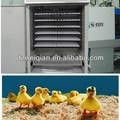 Incubateurs automatique fertile en provenance de chine à couver( 1056 œufs.)