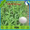 Natural Healthy Stevia Extract(Steviol Glycosides 98%)