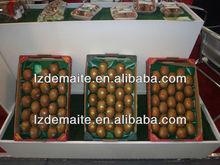 Plastic fruit tray kiwi fruit