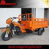 smart trike 300cc cargo tricycle