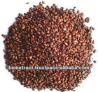 Grape Seed Extract supplier