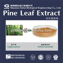 ratio extract pine needle extract 5:1 10:1