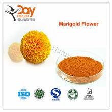 Benefits wholesale high eye herb medicine marigold