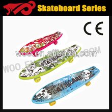 2013 custom penny cruiser in Aodi
