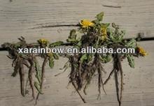 dandelion root extract flavonoids 4% 8% hplc