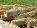 cana telhado thatching material