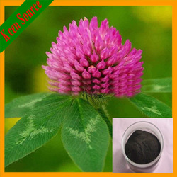 High Quality Red Clover Extract Total Isoflavones8%-40%