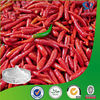 Capsaicin extract powder red nature HPLC 90.0% to 110.0%