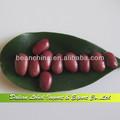 Suministro rojo pequeño judíasverdes, 2013 de cultivos, frijoles chinos