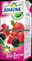 Outstanding Natural Taste Fruit Juice! Sweet & Fresh wildberry Juice.