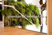 produttore parete verde vivente modulare fioriere verticali