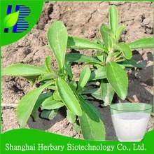 GMP factory supply stevia 90%