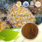 Food/Medical Grade Natural Bromelain Powder/Bromelain Enzyme/Pineapple Extract
